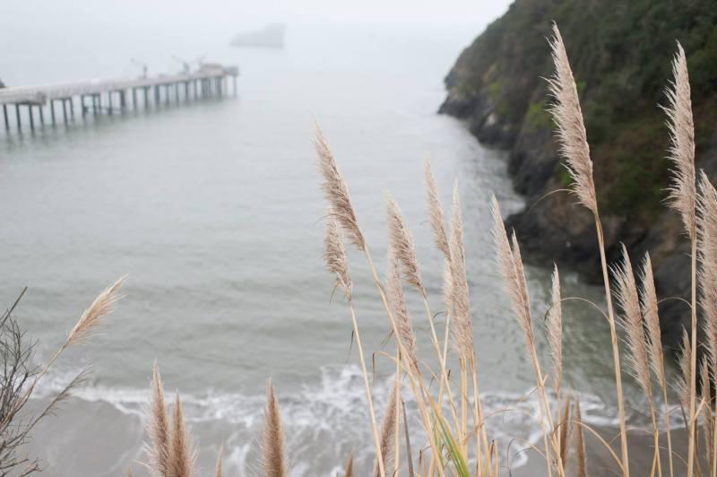 Trinidad California Ocean