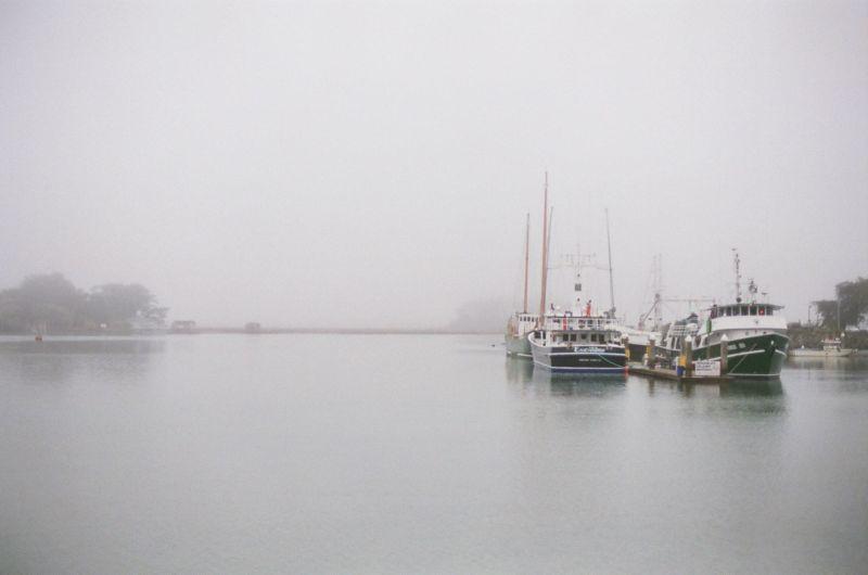 Eureka Ca foggy marina