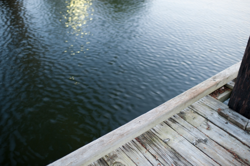 south-lake-union-seattle