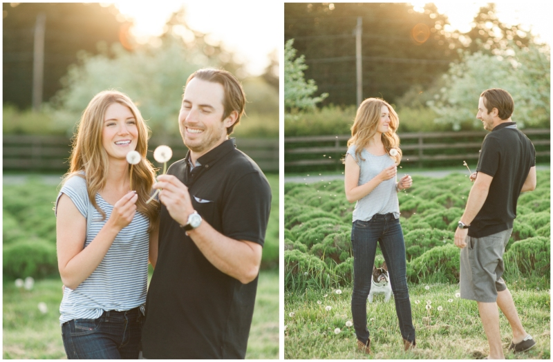 whidbey island engagement photography film french bulldog