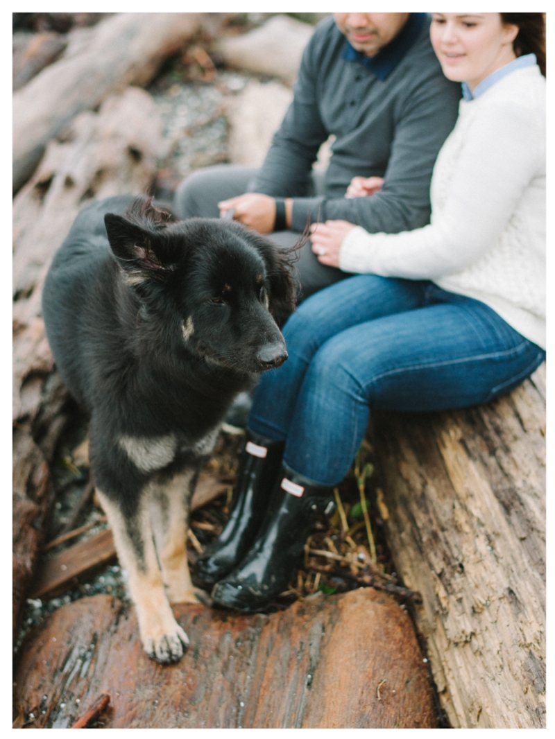 discovery park seattle engagement photos winter rainy dog