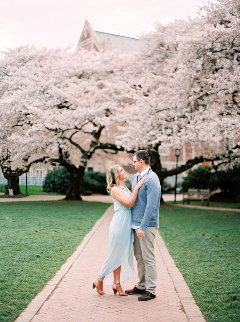 cherry-blossom-008
