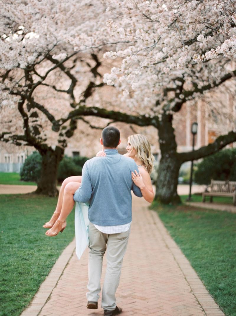 cherry-blossom-014