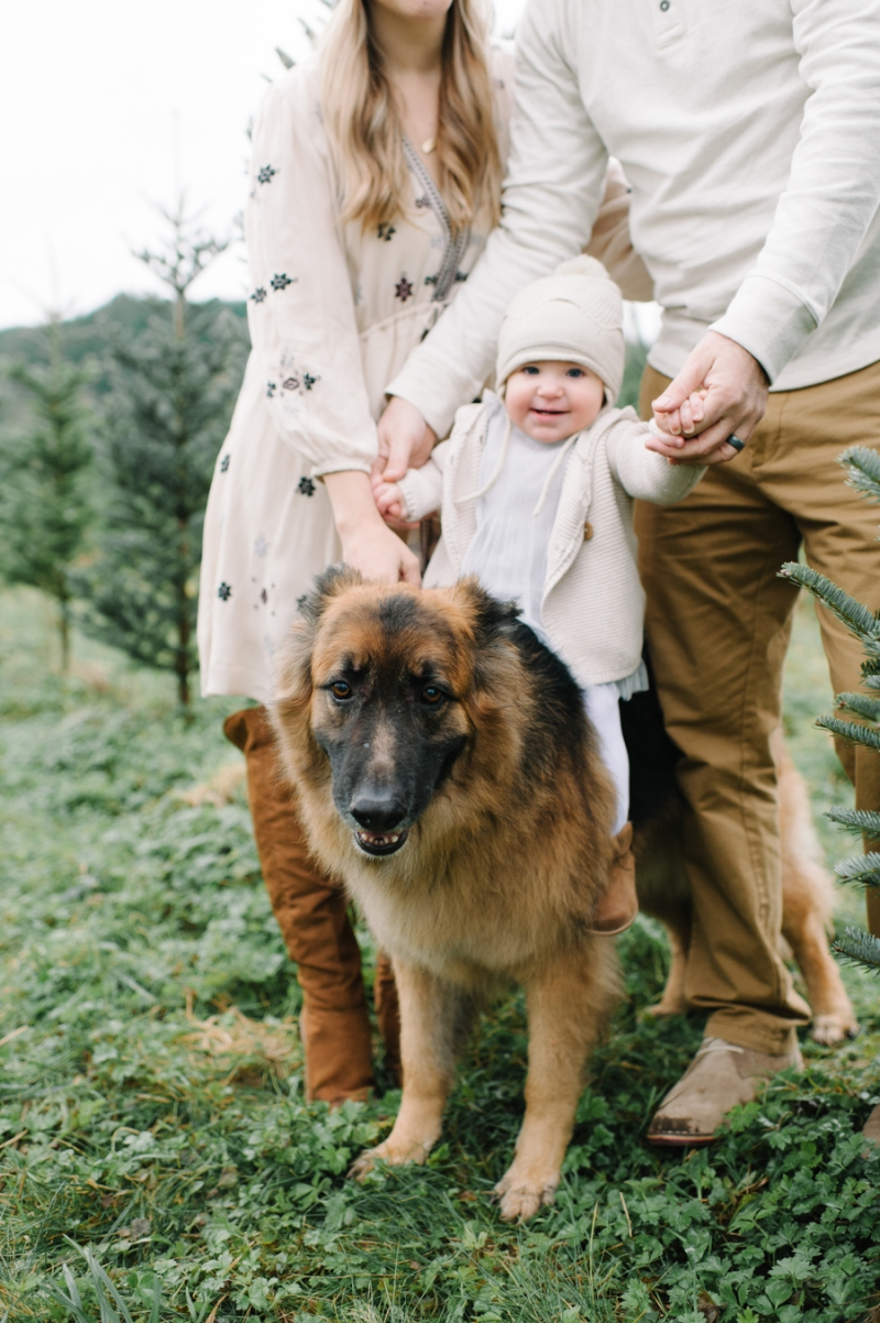 seattle-tree-farm-family-portraits014
