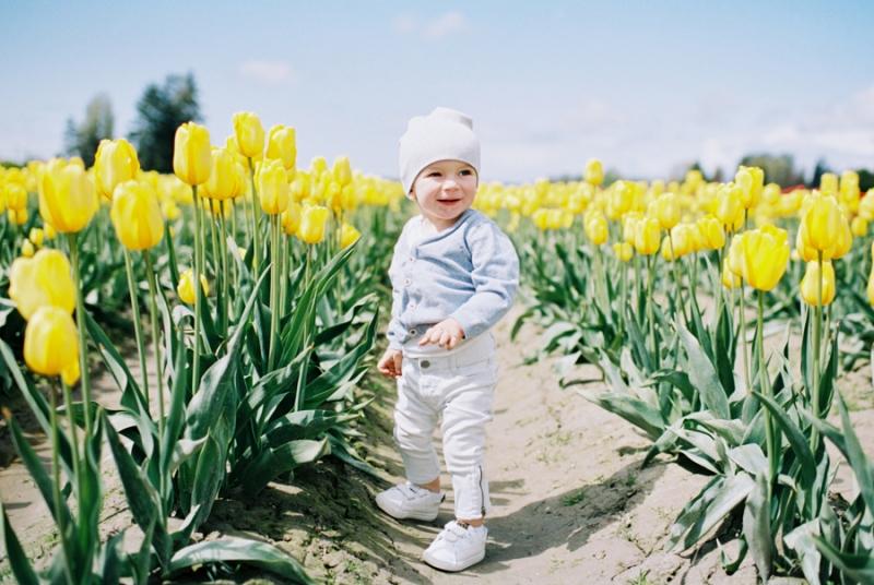 Baby-Tulip-Fields-WA-008
