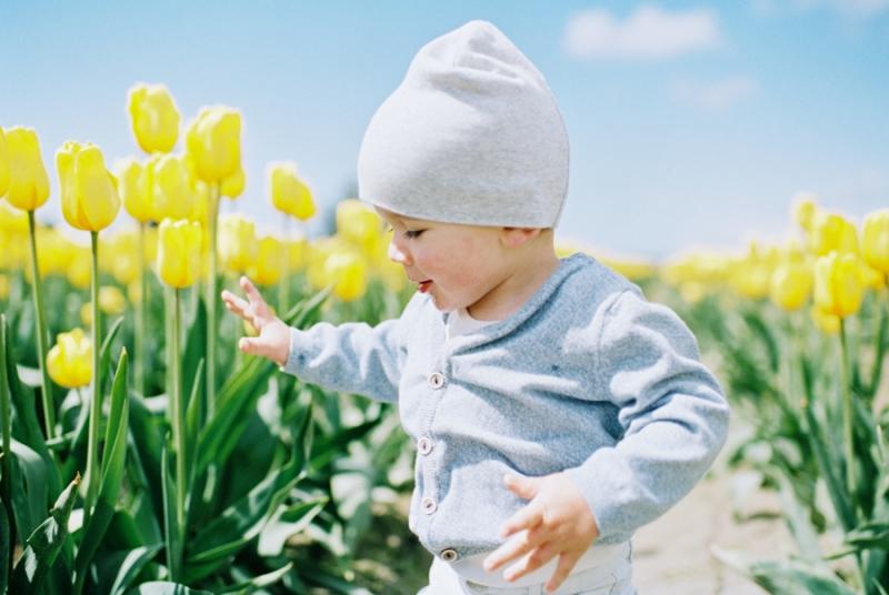 Baby-Tulip-Fields-WA-013