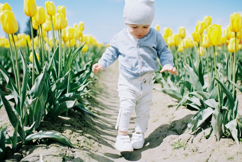 Baby-Tulip-Fields-WA-014