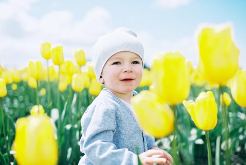 Baby-Tulip-Fields-WA-016