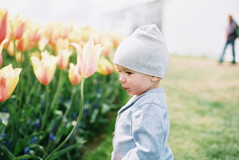 Baby-Tulip-Fields-WA-031