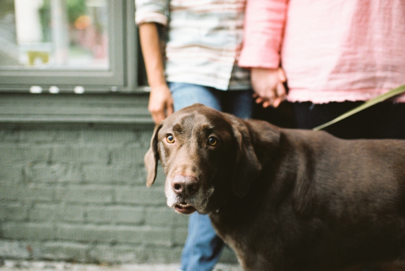 seattle-engagement-photos-film-dog037