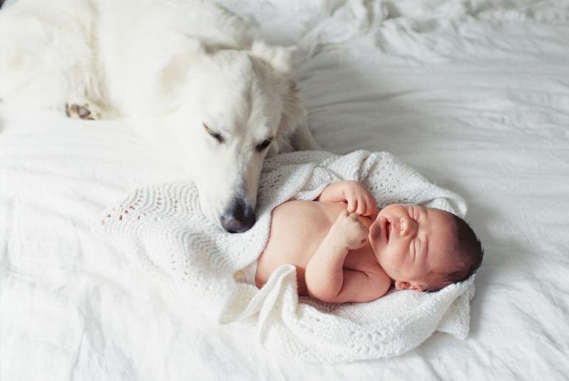 seattle-newborn-film-photographer0016