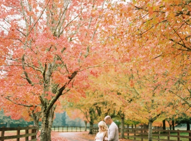 Seattle Maternity Photographer - Film - Fall Foliage - Rockwood Farm